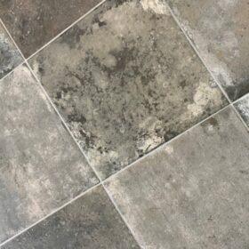 ant agostino-terre nuove dark-Plavuizen-Vlagsma tegelwalhalla-9