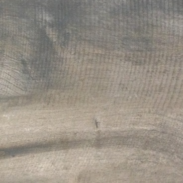Flaminia Masai Taupe bij Vlagsma tegelwalhalla