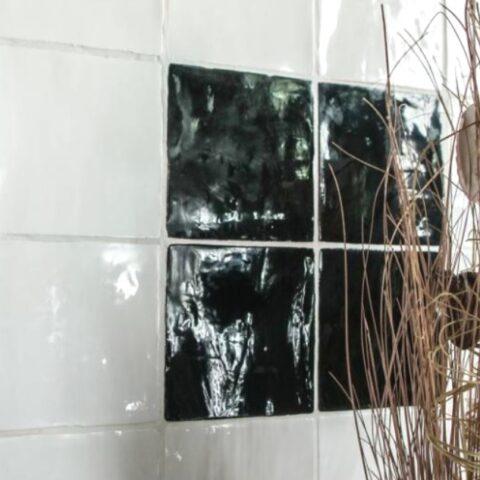 Pasicos epoque blanc-13x13-witjes-Vlagsma tegelwalhalla-4